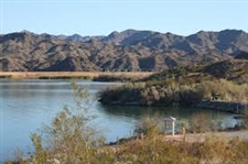 Gorgeous 40 Acre Arizona Mini Ranchette! Great Investment! Cash Sale! File #4788471