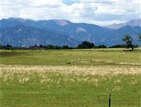 Gorgeous 35 AC Colorado Land! Mini Ranchette Home Site! Take Over Payments! Excellent Investment! Just Released! NO RESERVE!