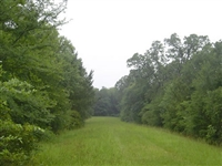 Deerwood Lakes Property! 50 Miles From Houston! Breathtaking View! CASH FILE#6835254