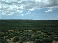 Incredible 40 Acre Ranchette Sweetwater County Wyoming Great Investment! No Reserve! Cash Sale!! File #13110023