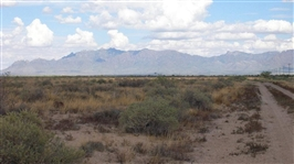 10 Acre New Mexico Investment! File #0824023