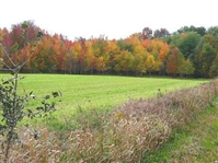 160 Acre Stunning Canada Property Great Investment! Homesite, Fish, Hunt, Relax!! Just Take Over Payments!!