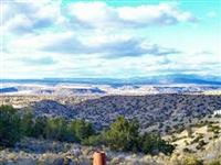 AMAZING NM LAND.  STRAIGHT SALE! SECLUDED GETAWAY! FILE #153094