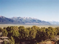 INCREDIBLE 640 ACRE RANCH IN HUMBOLDT COUNTY NEVADA! ASSUME PAYMENTS! IMPRESSIVE INVESTMENT!