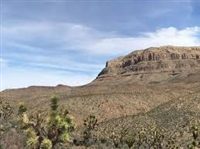 Gorgeous 40 Acre Arizona Mini Ranchette! Great Investment! Cash Sale! File #4788473