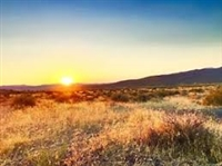 *40 ACRE NEVADA CASH GORGEOUS PRIME MINI RANCHETTE HOMESITE!! INVESTMENT/RETIREMENT OWN THE AMERICAN DREAM TODAY!! FILE #8676023 (Vault N)