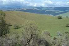 Incredible 2.54 Acre Southern California Mini Ranchette! Great Investment! Cash Sale! File #1537001