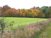 160.5 Acre Stunning Canada Property Large Acreage! Great Investment! Foreclosure! Take Over Payments!