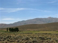 INCREDIBLE NV LAND, 40.20 AC., LARGE ACREAGE! TAKE OVER PAYMENTS!