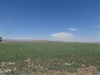 BREATHTAKING CA LAND, 2.50 AC., TAKE OVER PAYMENTS!