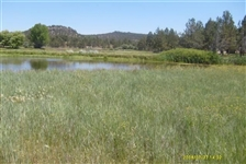 Gorgeous Northern California 1 Acre Property In Beautiful California Pines Subdivision!!! Just Bid & Take Over Payments.