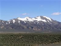 EXCELLENT BUY! BEAUTIFUL  NV LAND, 40.51 AC., LARGE ACREAGE! BID AND ASSUME PAYMENTS!