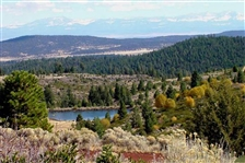 STUNNING CA LAND, 1 AC., CALIF. PINES, FORECLOSURE! JUST TAKE OVER PAYMENTS!