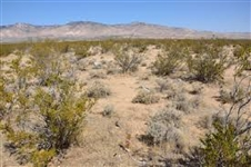 Southern California 2.48 Acres Mini Ranchette Road Access!! Great Investment!! Take Over Payments!!