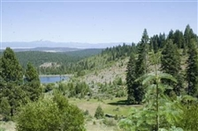 BID AND ASSUME FORECLOSURE! BEATUTIFUL CA LAND, CALIF. PINES! RECREATIONAL OPPORTUNITIES! IMPRESSIVE INVESTMENT!