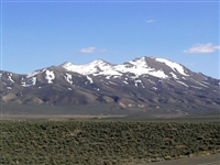 40 Acre Nevada Ranchette!! Great Investment!! Just take over Payments!