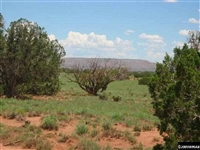 GORGEOUS AZ LAND, 10 AC., RANCHETTE-APACHE. TAKE OVER PAYMENTS!